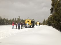 Tourists with snow coaches in Yellowstone National Park Royalty Free Stock Photography