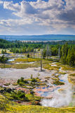 Yellowstone National Park, Wyoming, USA Royalty Free Stock Images