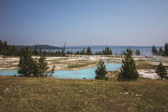 Yellowstone nationale parken Stock Afbeelding
