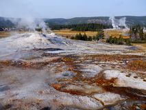 Yellowstone nationalpark Arkivfoton