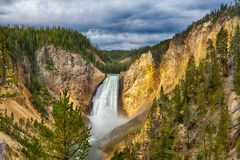 Yellowstone nationalpark Arkivfoto
