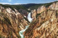 Yellowstone nationalpark Arkivbild