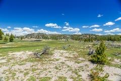 Yellowstone Nationalpark Lizenzfreie Stockbilder
