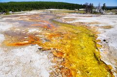 Yellowstone Nationalpark Stockfotografie