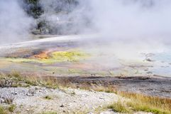 Yellowstone Nationalpark Stockbilder