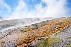 Yellowstone Nationalpark Stockfotos