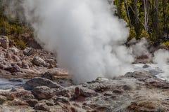 Yellowstone nationalpark Royaltyfri Bild