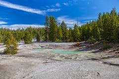 Yellowstone nationalpark Arkivbilder