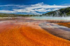 Yellowstone nationalpark Royaltyfri Fotografi