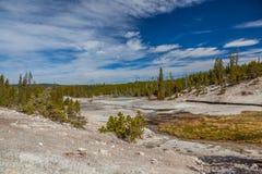 Yellowstone nationalpark Fotografering för Bildbyråer
