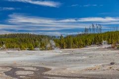 Yellowstone nationalpark Royaltyfria Foton
