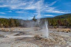 Yellowstone nationalpark Arkivfoton