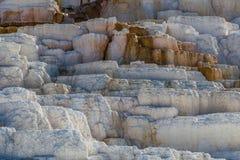 Yellowstone nationalpark Arkivfoto