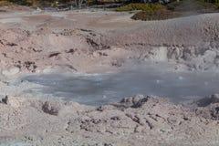 Yellowstone Nationalpark Stockbilder