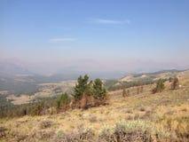 Yellowstone Nationalpark Stockfoto