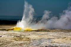 Yellowstone nationalpark 4 royaltyfri foto