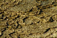 Yellowstone Nationalpark Geysire 7 Lizenzfreies Stockfoto