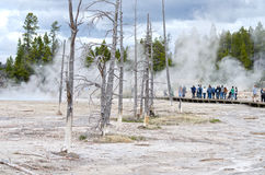 Yellowstone Nationalpark Künstler Paintpots, Wyoming Stockbild