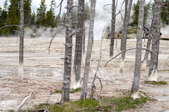 Yellowstone Nationalpark Künstler Paintpots, Wyoming Stockfoto