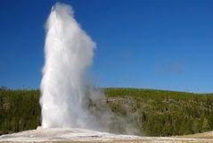 Yellowstone Nationalpark, USA Stockbild
