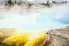 Yellowstone nationalpark, Utah, USA Royaltyfri Fotografi