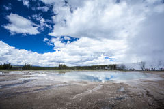 Yellowstone nationalpark, Utah, USA Arkivbilder