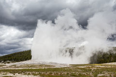 Yellowstone Nationalpark, Utah, USA Stockbilder