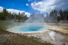 Yellowstone Nationalpark, Utah, USA Lizenzfreie Stockbilder