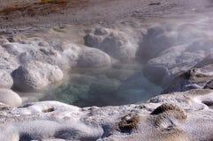 Yellowstone Nationalpark, Utah, USA Lizenzfreies Stockfoto