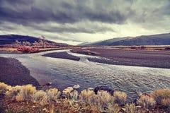 Yellowstone Nationalpark Wildnis an einem dunklen, regnerischen Tag Lizenzfreies Stockbild
