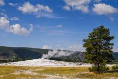 Yellowstone nationalpark, Wyoming, USA Arkivfoto