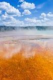 Yellowstone nationalpark, Wyoming, USA Royaltyfria Foton