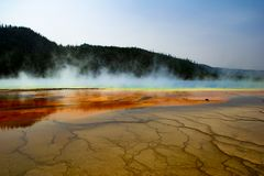 Yellowstone nationalparkgeyser 2 royaltyfri fotografi