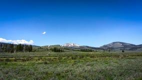Yellowstone nationalparklandskap Arkivfoto