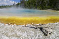 Yellowstone Royalty Free Stock Photography
