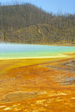 Yellowstone no.6 royalty free stock photography