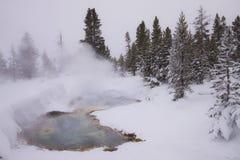 Yellowstone no inverno, neve do anúncio do myst Fotografia de Stock Royalty Free