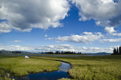 Yellowstone: Open Wild. Beautiful photograph of a vast open field with a meandering stream in Yellowstone National Park, Wyoming, USA royalty free stock photos