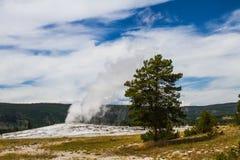 Yellowstone oude gelovig royalty-vrije stock afbeelding