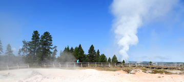 Yellowstone panorama Royaltyfri Foto