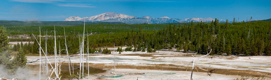 Yellowstone Panorama 3 Royalty Free Stock Photos