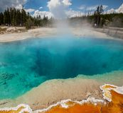 Yellowstone Park Stock Photos