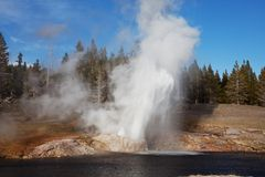 Yellowstone Stock Photos