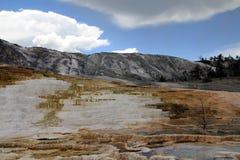 Yellowstone park narodowy Zdjęcie Royalty Free