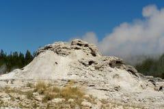 Yellowstone park narodowy Obrazy Royalty Free