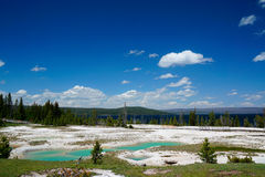 Yellowstone park narodowy Obrazy Royalty Free