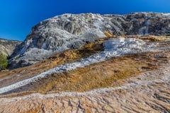 Yellowstone park narodowy Obraz Stock