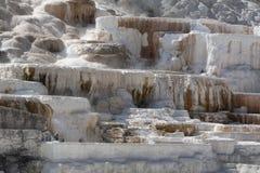 Yellowstone park narodowy U S National Park Service obrazy royalty free