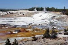 Yellowstone park narodowy, Wyoming, Stany Zjednoczone Obrazy Royalty Free