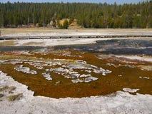 Yellowstone park narodowy, Wyoming, Stany Zjednoczone Obraz Stock